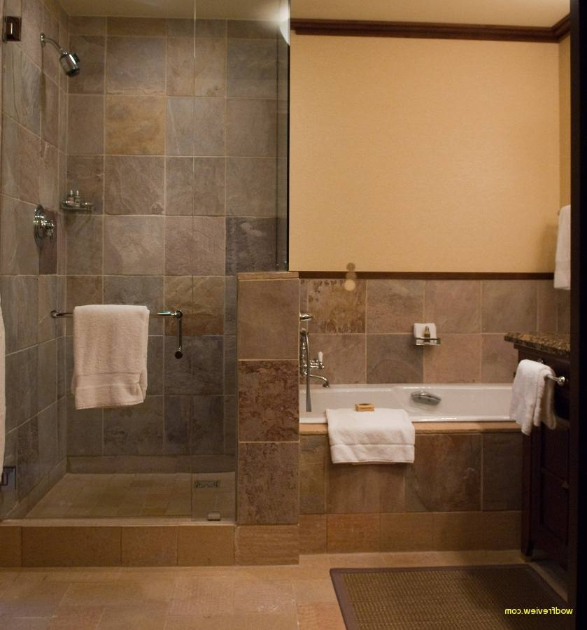 Bathroom Designs Without Bathtub Pro Interior Decor pertaining to Small Bathroom Design Ideas Without Bathtub