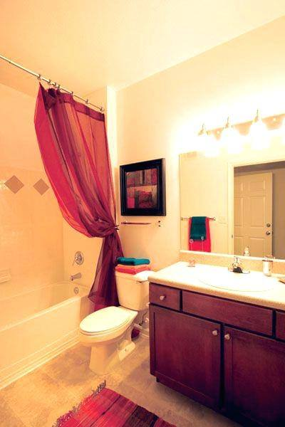Decor Ideas For Apartments Perfect Amazing Apartment Decor Ideas Apartment Bathroom