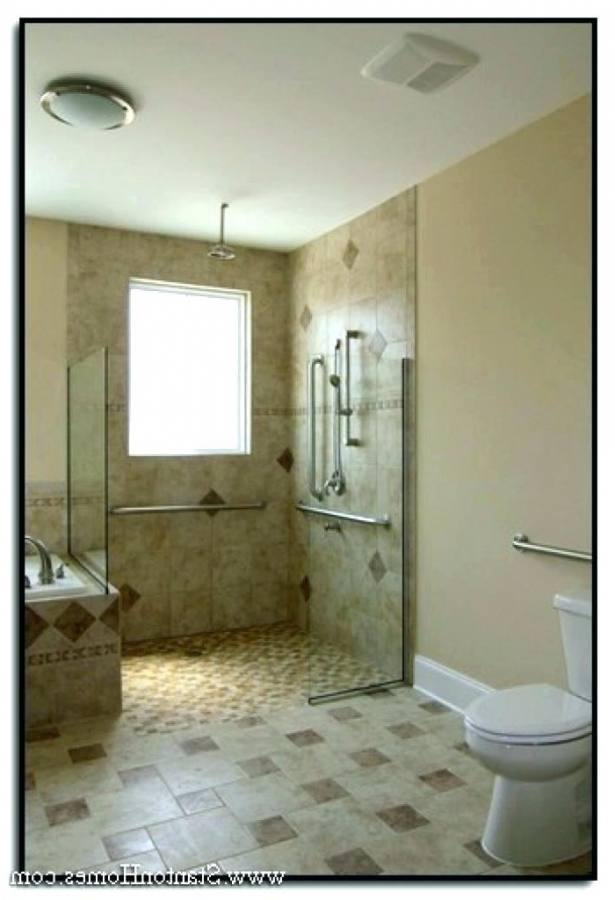 handicap bathroom ideas wheelchair accessible bathroom design with nifty wheelchair accessible bathroom ideas pictures remodel and