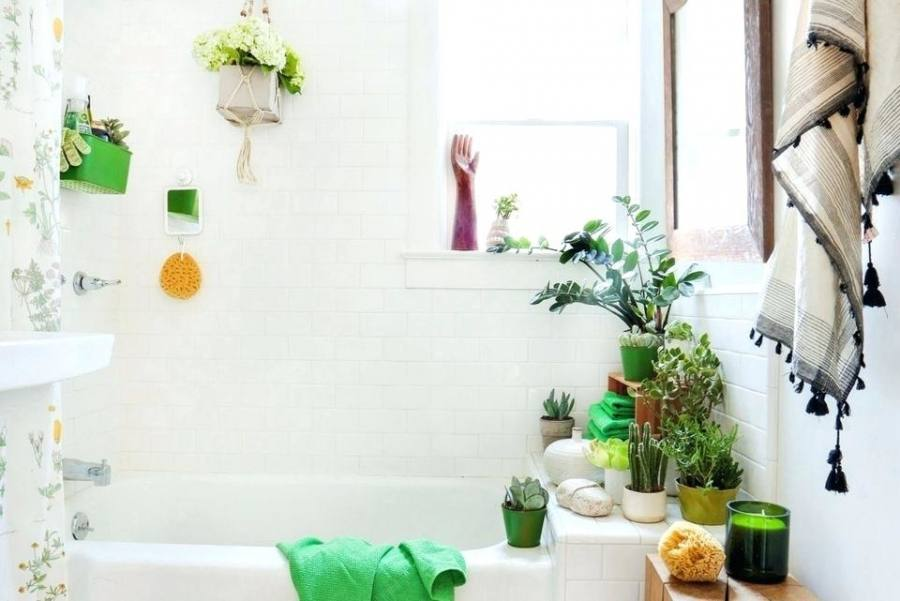 plants bathroom ideas best for bathrooms with no window how to make the most of house