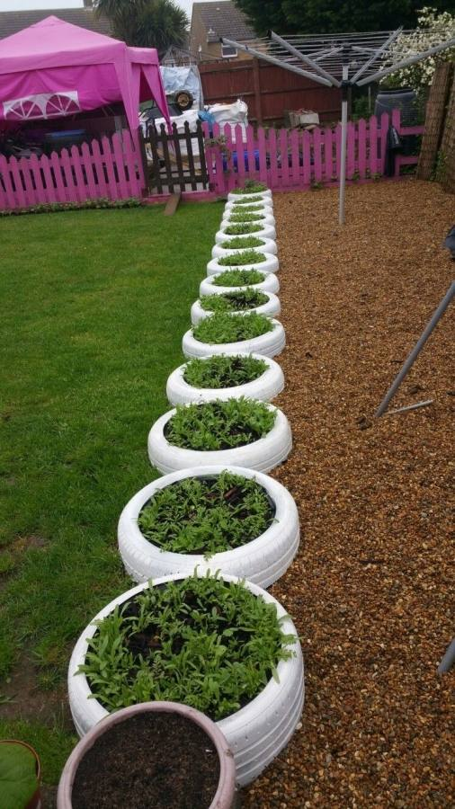 A really cheap and easy way to spruce up your garden