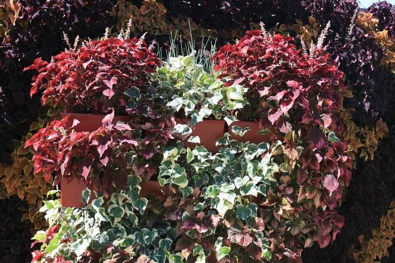 outdoor living wall plus wall plants outdoor wall plants outdoor garden artificial plants fire retardant outdoor