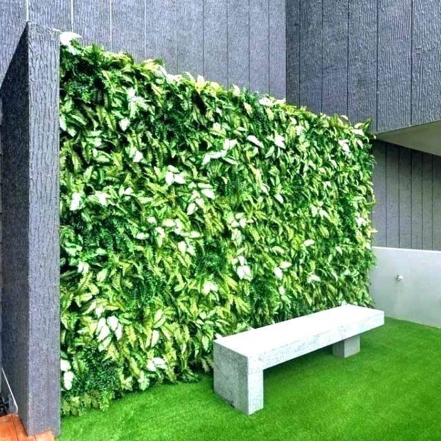 When used on the exterior of buildings, vertical gardens are most frequently found in cities,