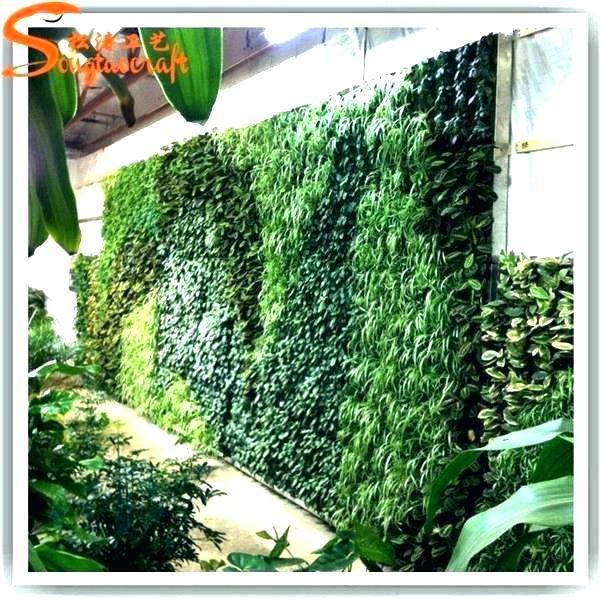 Medium Size of Outdoor Living Wall Uk Panel Grid Walls Canada Plant Fake Hang Green For