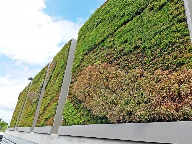 'Living walls' can be created with canvas planters, which are attached to the wall with screws and which contain pockets for the plants