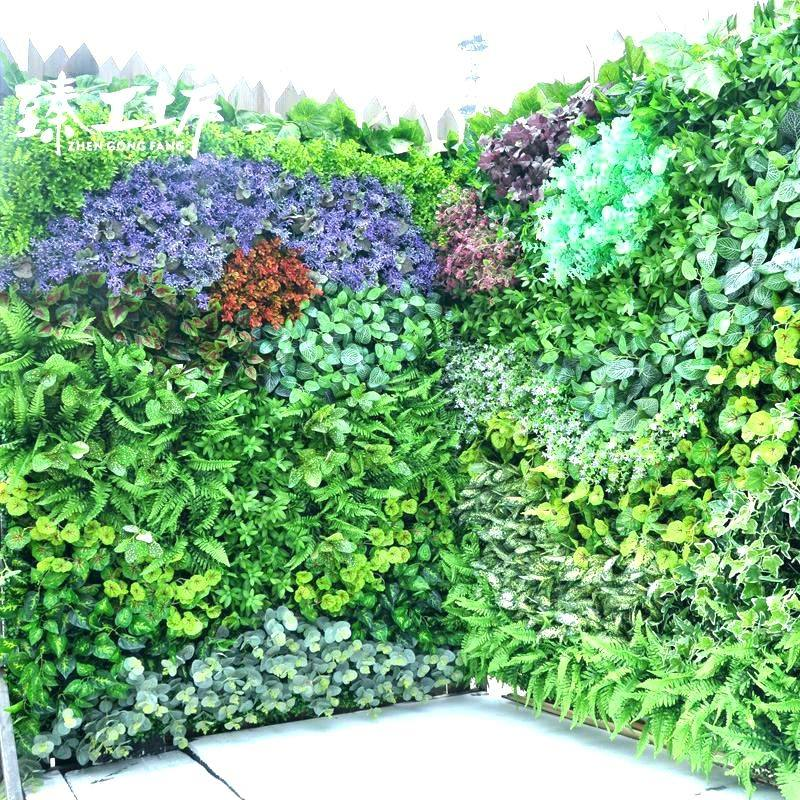 Herb and edible living wall plants